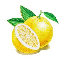 Yellow Grapefruit Photographic Print