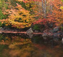 Autumn Reflections by faczen