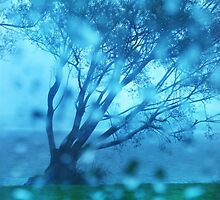 The biggest Rain Drops are in New Zealand by Angelika  Vogel