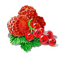 Raspberries And Redcurrant by Irina Sztukowski