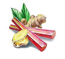 Rhubarb And Ginger by Irina Sztukowski
