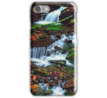 MOUNTAIN STREAM,AUTUMN iPhone Case/Skin
