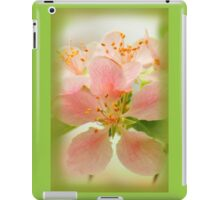Apple Blossoms in Spring iPad Case/Skin