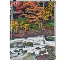 Autumn Rapids iPad Case/Skin
