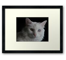 Who's That Girl Framed Print