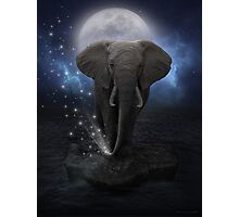 Power Is No Blessing In Itself (Protect the Elephants)  Photographic Print