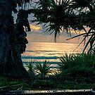 Coolum Sunrise by Aaron Kent