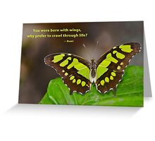 Born With WIngs Greeting Card