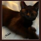 MEOW! MEOW! MEOW!! MY NIKKI by Sherri Palm Springs  Nicholas