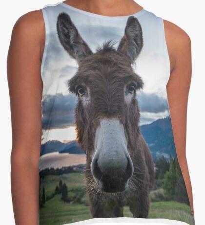 Donkey Contrast Tank