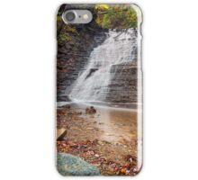 Ohio's Buttermilk Falls iPhone Case/Skin