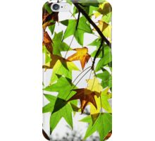 A touch of Autumn iPhone Case/Skin