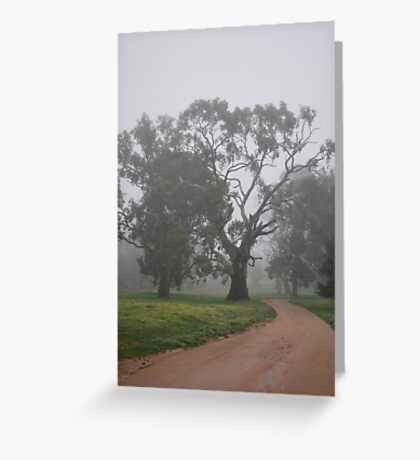 Meeting the Morning with Grace By Lorraine McCarthy Greeting Card