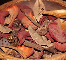 Home-made Potpourri by Maree  Clarkson