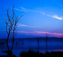 Misty Lake at Dawn by Delmas Lehman
