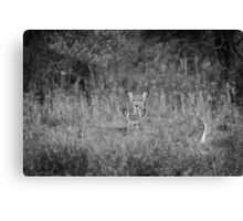 Doe And Yearling Fawn Canvas Print