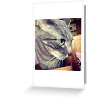 Emerald Eyed Cat Greeting Card