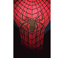 Comic-Colored Spider-Man Photographic Print