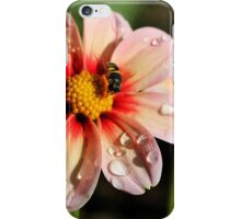 Pink Dahlias and a Bee iPhone Case/Skin