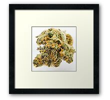 Girl Scout Cookies Strain Framed Print