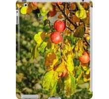 Red apples on the brunch iPad Case/Skin