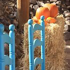 Turquoise Chairs and Pumpkins by Denice Breaux