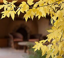 Fall Foliage and Kiva by Denice Breaux