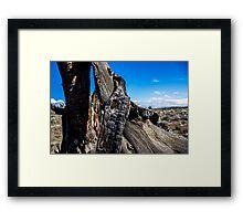 Desert Ribbon  Framed Print