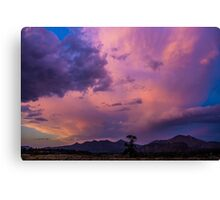 The Stand Canvas Print