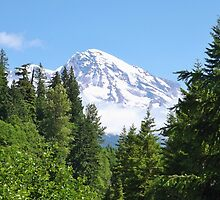 THE MIGHTY MT. RAINIER by CHERIE COKELEY