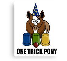 One Trick Pony Canvas Print