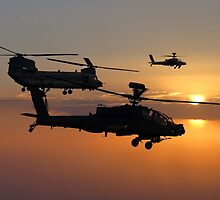 Apache Escort  by J Biggadike