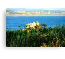 Ocean/Newport Canvas Print