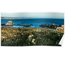 Shore of Creation/Newport Poster