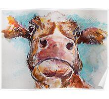 Stroppy Cow Poster