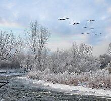 Winter Bombers  by J Biggadike