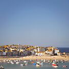St Ives Harbour. by Lyn  Randle