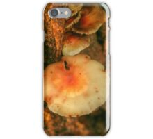 Fungi ... Colours & Patterns iPhone Case/Skin