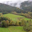 Simonswald - Schwarzwald - Germany by Arie Koene