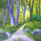 Woodland Path, Killynether Woods by Les Sharpe