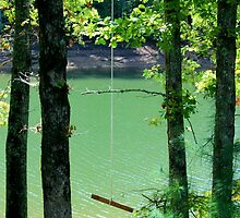 Rope Swing by Asoka