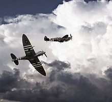 Mighty Spitfires  by J Biggadike