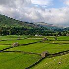 Swaledale Stone Barns by Trevor Kersley