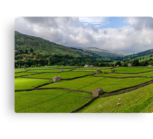 Swaledale Stone Barns Canvas Print
