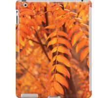 Mountain Ash Leaves - Autumn iPad Case/Skin