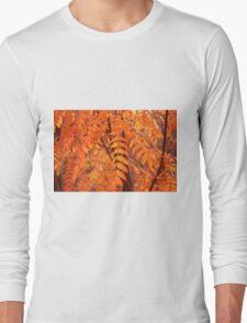 Mountain Ash Leaves - Autumn Long Sleeve T-Shirt