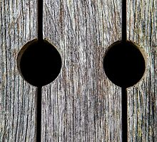 Wood with Circular Holes by broomhillphoto