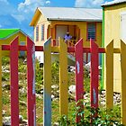 Colors of Anegada  by ChelcieSPorter