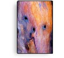 The Driftwood Picasso Canvas Print