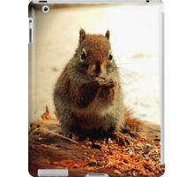 Red Squirrel in Winter iPad Case/Skin